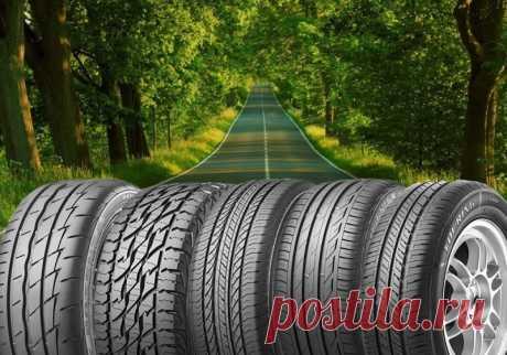 Разновидности шин и колес — Полезные советы