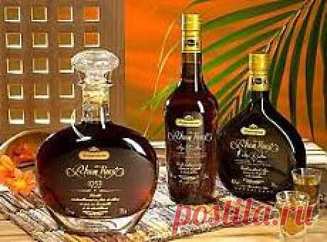 El alcohol   las Recetas de la comida simple y sabrosa sobre el Postlimo