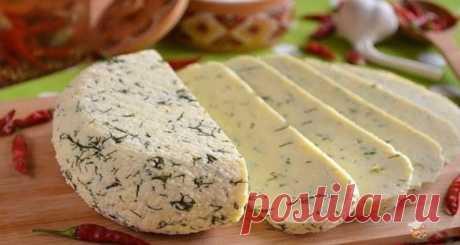 Как сделать сыр дома - лучший сайт кулинарии