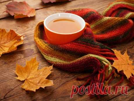 Красивые стихи и золотые краски в волшебных фотографиях осени | Newpix.ru - позитивный интернет-журнал