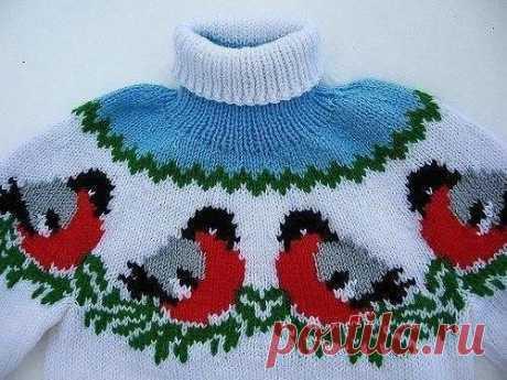 Детский свитер со снегирями | Вяжем Тут