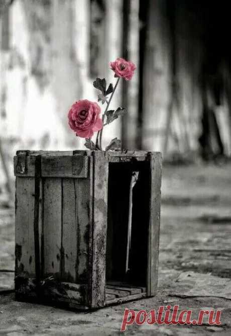 """Даже в """" режиме ожидания """" учитесь быть счастливыми. """" Не скоро """" - не значит """" никогда """"..."""
