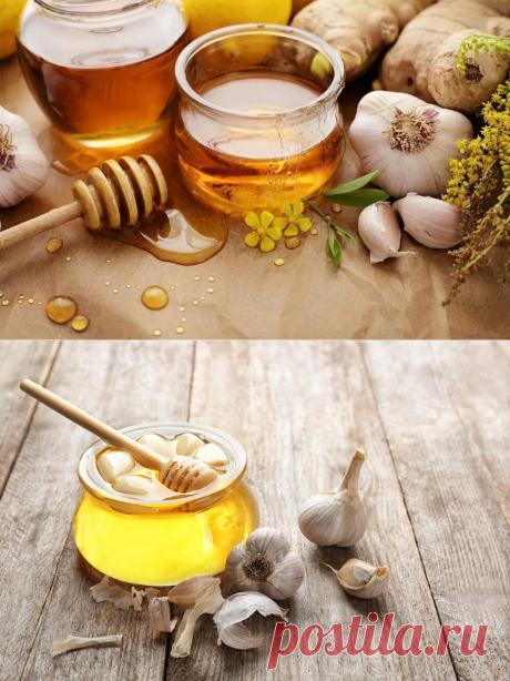 Чеснок с медом - забытое сочетание, которое укрепит иммунную систему за 7 дней