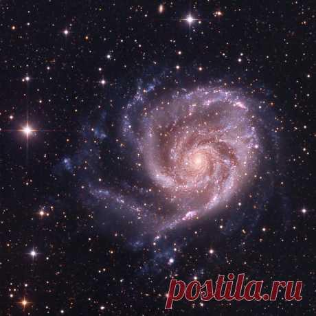 Галактика М 101 от Andy Chatman / Интересный космос