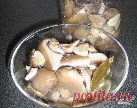 Вешенки, маринованные на закуску - пошаговый рецепт с фото на Повар.ру