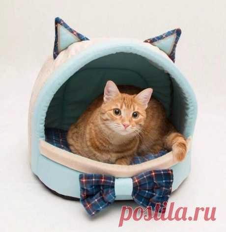 Выкройка лежанки для кота Модная одежда и дизайн интерьера своими руками