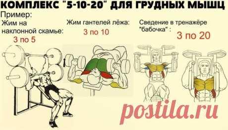 Комплекс 5-10-20 для грудных мышц / Спорт Сильных!
