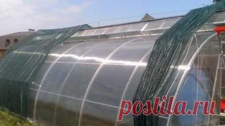 Чем притенить теплицу из поликарбоната от солнца в жару: эффективные методы