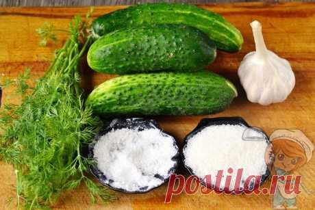 Малосольные огурцы в пакете: быстрый рецепт с чесноком и зеленью
