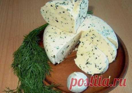 Домашний сыр без заморочек - пошаговый рецепт с фото.  Ингредиенты Замечательный   рецепт домашнего сыра Вкус типа сулугуни   или нежной брынзы Можно делать с укропом, кинзой, грецкими орехами, оливками, паприкой. Вкусно в чистом виде со свежим хлебом, его также можно добавлять в пиццу, салаты, пасту. В общем, для насыщенного натурального вкуса я прибегла к наполнителям. Просматривайте этот и другие пины на доске Еда пользователя Tatiana M. Теги Домашний сыр без заморочек.