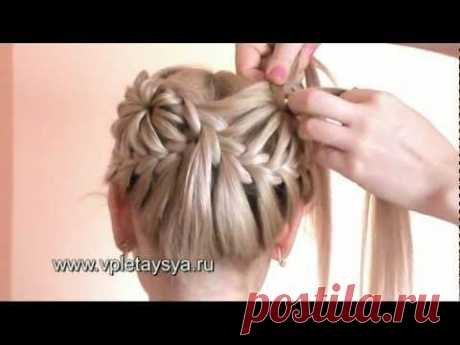 Hairdress from braids in the form of two flowers
