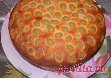 (3) Виноградный пирог Автор рецепта Мария - Cookpad