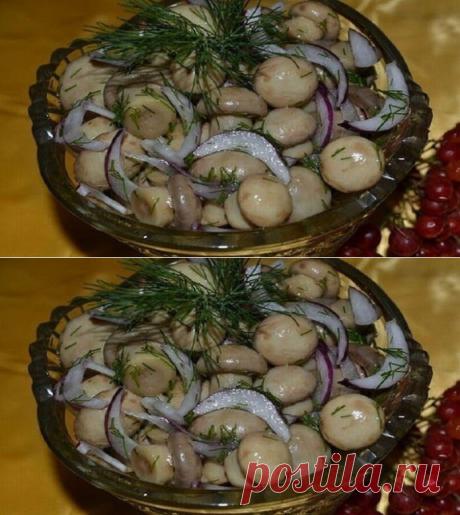 Los champiñones rápidos poco salados - Quiero preparar