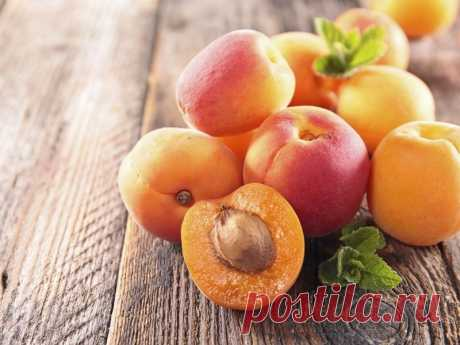 Самоплодные сорта абрикоса, описание, характеристика и отзывы, а также особенности выращивания Самоплодные абрикосы: обзор популярных сортов с фото, характеристикой и отзывами.