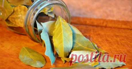 Set fire to bay leaf in the house and watch what will occur in 10 minutes!