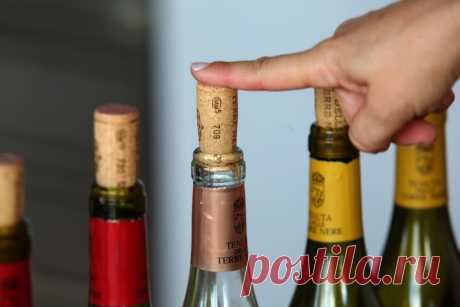 Правдали, что зимой нужно пить красные, алетом белые вина? | Вопрос-ответ | Вокруг Света