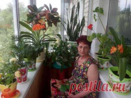 Наталья Сандалова РПО Арго Руководитель Россия