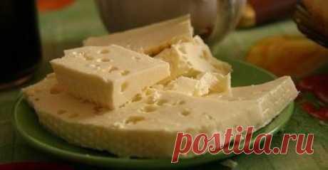 Молочные продукты — Чудо поваренок