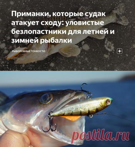 Приманки, которые судак атакует сходу: уловистые безлопастники для летней и зимней рыбалки | Рыболовные тонкости | Яндекс Дзен