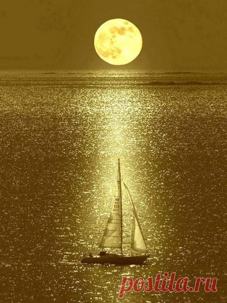 В небе такая луна, Словно дерево спилено под корень : Белеет свежий срез.      Басё