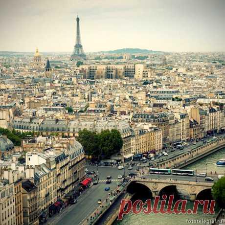 Прогулка по собору Парижской Богоматери