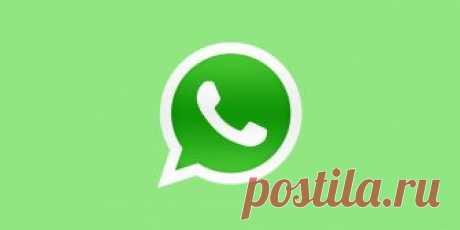 Как прокачать WhatsApp: 4 удобных инструмента - Лайфхакер