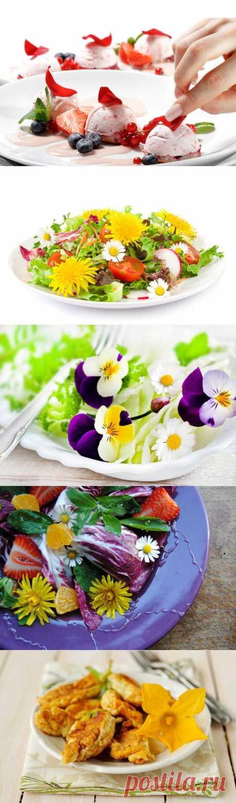 Цветочная кулинария: тонкости изысканных блюд