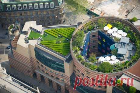 Сады на крышах домов