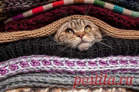 Как ускорить ручное вязание: мой набор секретов