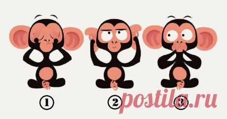 Тест: Выберите обезьянку, чтобы проанализировать свое подсознание и лучше понять себя | Скиталец | Яндекс Дзен
