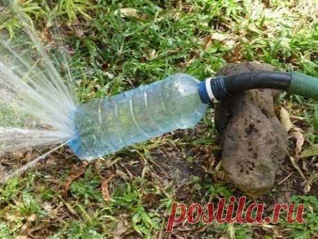 Применение пластиковых бутылок в приусадебном хозяйстве