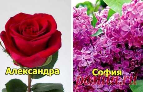 Цветок Вашего имени! А какой цветок соответствует Вам?
