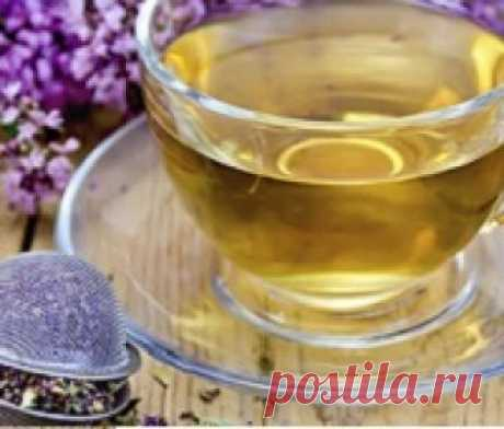 Tea with a thyme: advantage and harm | the World of Health and Beauty Tea with a thyme: advantage and harm. How to make a thyme for tea. Tea with a thyme: advantage for men and women. Green tea with a thyme: advantage. Tea with a thyme and mint: useful properties. Video.