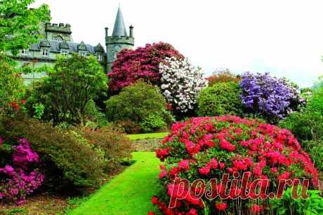 Сокровище Шотландии - замок Инверари.