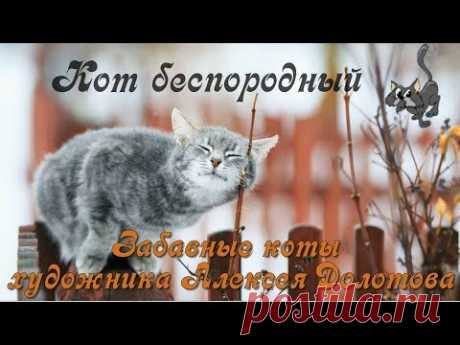 С международным днем котов и кошек!
