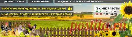 Перосъемная машина купить в Москве недорого, Конусы для убоя