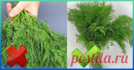Это растение характеризуется приятным запахом, привносит интересную вкусовую нотку и явл