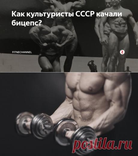 Как культуристы СССР качали бицепс? | fitnechannel | Яндекс Дзен