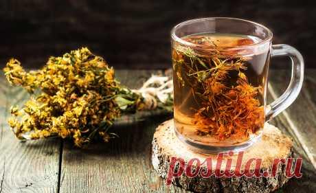 Чай из зверобоя: польза и вред для организма, показания к применению Чай из зверобоя известен своими целебными свойствами. У напитка необычный и оригинальный вкус, часто применяется для поддержания тонуса и хорошего настроения.