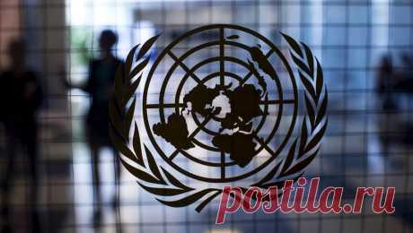 В ООН ожидают ЭКОНОМИЧЕСКИЙ катастрофический СПАД в 2021 году Директор Всемирной ПРОДОВОЛЬСТВЕННОЙ ПРОГРАММЫ (ВПП) ООН Дэвид Бизли заявил, что 2021 год может стать для мира катастрофическим. Об этом сообщает РИА «Новости» .