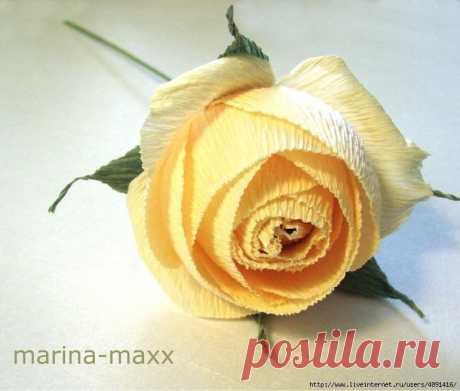Английская роза из бумаги (мастер-класс)