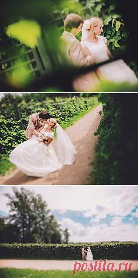 Отныне и навсегда: свадьба Ильи и Натальи - WeddyWood