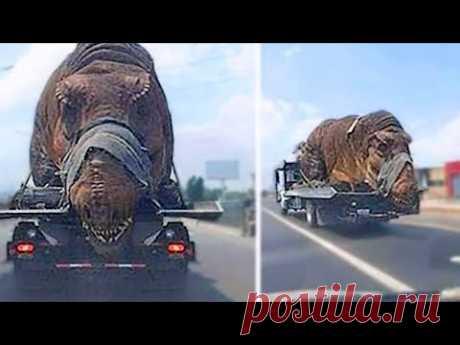 Найден Самый ДРЕВНИЙ Динозавр в Мире! Самые Опасные Животные в Истории