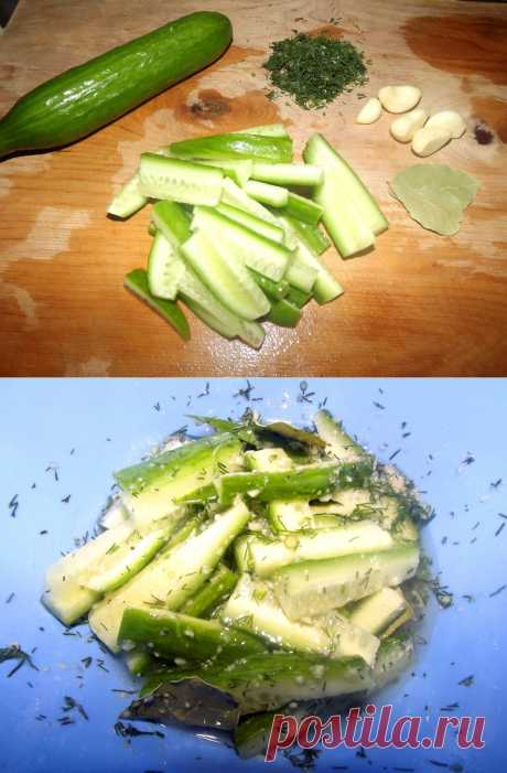 Fresh-salted cucumbers. Well and as not to give to guests to a table the tasty, crackling, freshly cooked FRESH-SALTED CUCUMBERS:\u000d\u000aIngredients: cucumbers, garlic, fennel, bay leaf, rast. oil, salt.\u000d\u000aPreparation: We cut cucumbers bars. We cut fennel and garlic very small. We connect all products, we add bay leaf, fennel, it is not a lot of salt and rast. oil.