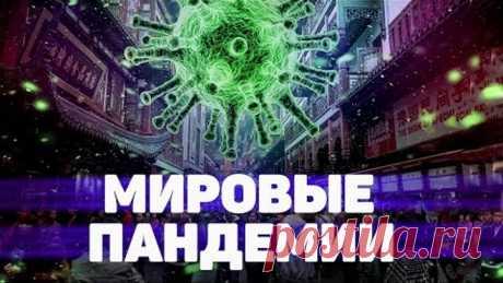 Тест Мировые пандемии. Викторина с ответами 12+