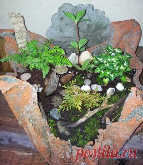 Create Your Own Cement Cloth Planter Make Your Own Cement Cloth Planting Pot Want a unique rustic planter for your front porch, lanai or just about anywhere? These cement cloth planters are a fun easy project for everyone. It'…
