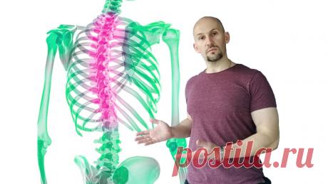 4 упражнения для грудного отдела позвоночника, которые помогут убрать многие «болячки»   Геннадий Лянго   Яндекс Дзен