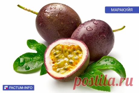 Маракуйя - это плод тропической лианы. Родина маракуйи - Бразилия и Северная Аргентина. Мякоть желеобразная сочная и содержит много съедобных семян. Темно-фиолетовая маракуйя имеет незабываемый сладкий вкус и насыщенный аромат.  Удивительные экзотические фрукты ➡️ https://factum-info.net/fakty/eda/365-karambola-lichi-rambutan-mangostan-sapodilla-marakujya-udivitelnye-ekzoticheskie-frukty