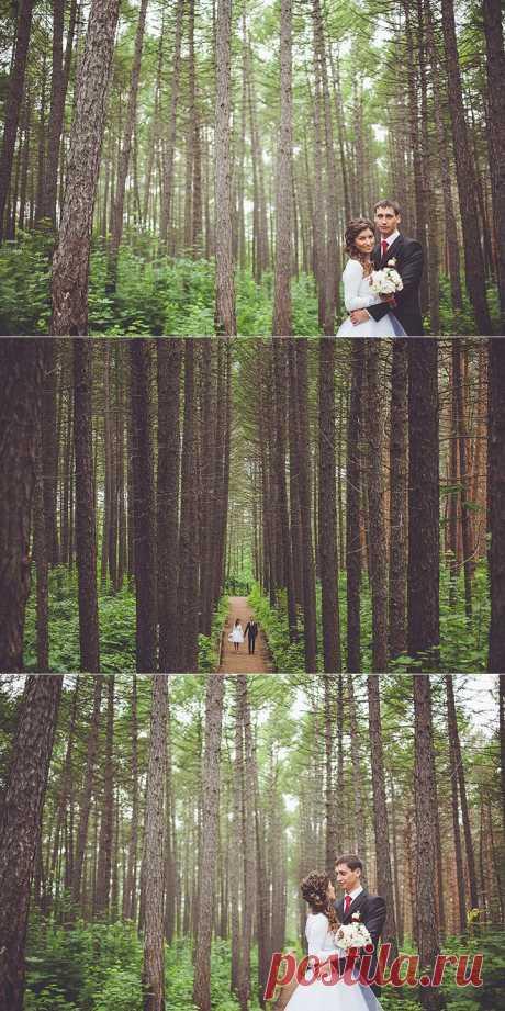 Прогулка для двоих: свадьба Андрея и Лены - WeddyWood