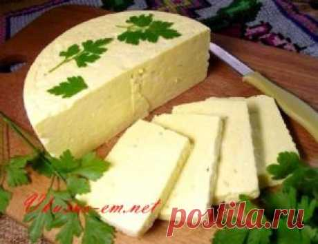 Lazy home-made sheep cheese
